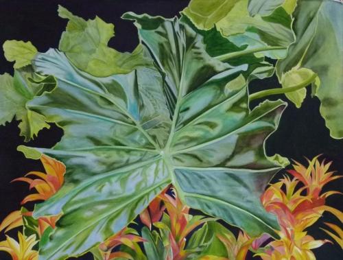 Leafy Vain's