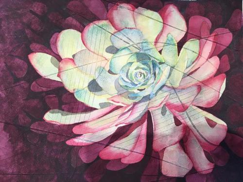 Drought Tolerant Watercolor