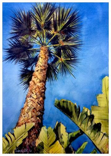 Fan Palm Perspective