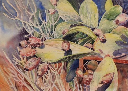 Pricklyl Pear